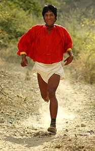 Born To Run Tarahumara