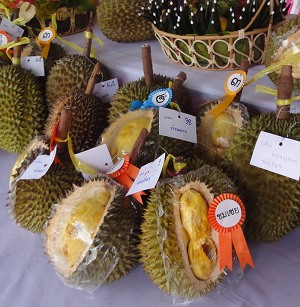 Durian Festival Other Fruit