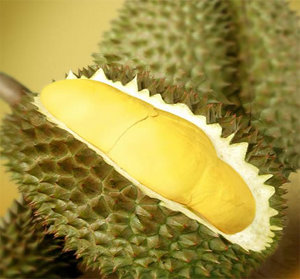 Durian Fruit Cut