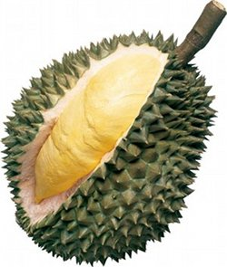 Durian Fruit Sliced
