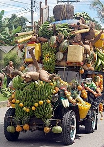 Fruit Vs Vegetable                         Truck