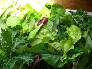Raw Food Combining Salad Greens
