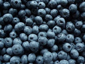 Fructose In Fruit Blueberries