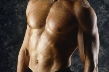 Vegetable Protein Muscle