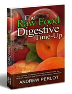 Raw Food Digestive Rune-Up Cover Small