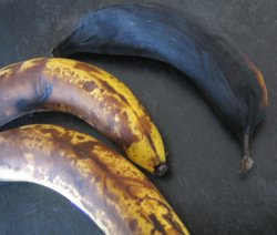 Ripen Plantains 4