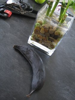 Ripen Plantains 6