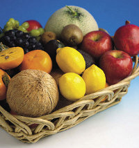 Raw Food Success                         Stories Fruit
