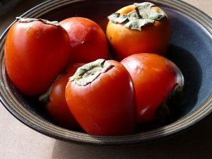 Nutrition requirements                       Persimmons